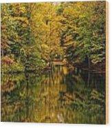 Willett Autumn Reflections Wood Print