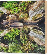 Williams River Reflections Wood Print by Thomas R Fletcher