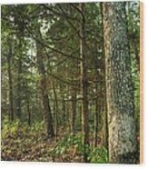 William's Woods Wood Print