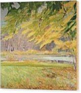 Williamstown Autumn Wood Print