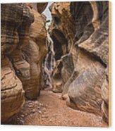Willis Creek Slot Canyon 6 - Grand Staircase Escalante National Monument Utah Wood Print