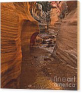 Willis Creek Slot Canyon Wood Print by Robert Bales