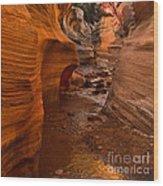 Willis Creek Slot Canyon Wood Print