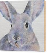 Willis Rabbit Wood Print