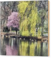 Willow And Cherry By Lake Wood Print