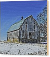 Willow Barn Painting Wood Print
