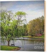 Willow Lake Wood Print by Crystal Joy Photography