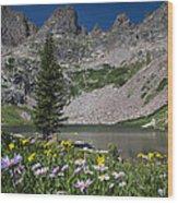 Willow Lake Wood Print by Michael J Bauer