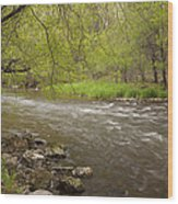 Willow River 3 Wood Print