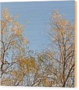 Willows And Sky Wood Print