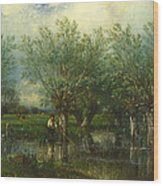 Willows With A Man Fishing Wood Print