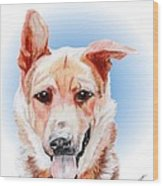 Willy A Former Shelter Sweetie Wood Print