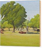 Wimberley Pastoral Wood Print