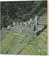 Winay Wayna Inca Trail Peru Wood Print