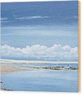 Winchelsea Gulls Wood Print