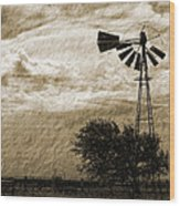 Wind Blown Wood Print by Tony Grider