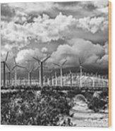 Wind Dancer Palm Springs Wood Print by William Dey