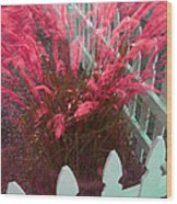 Wind In The Grass - Red Wood Print