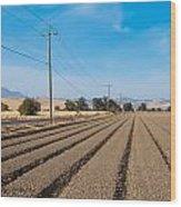 Wind Rows Farm Wood Print