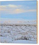 Wind Swept Plains Of Iceland Wood Print