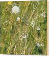 Wind Through The Meadow Wood Print