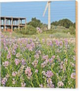 Wind Turbine And Flowers Wood Print by Gynt