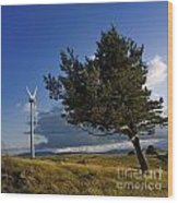 Wind Turbine And Tree On The Plateau Of  Cezallier. Auvergne. France. Wood Print