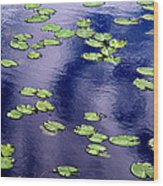 Wind Whirling The Lake Wood Print