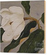 Windblown Magnolia Wood Print