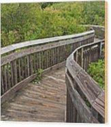 Winding Boardwalk Wood Print