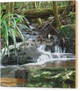 Winding Cascade Wood Print