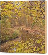 Winding Creek Wood Print