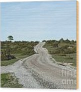 Winding Gravel Road Through A Landscape With Lots Of Junipers Wood Print