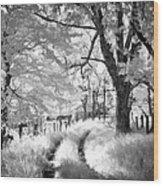 Winding Journey Through The Blue Ridge Wood Print