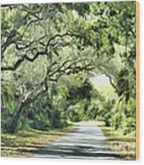 Winding Path Wood Print
