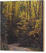 Winding Road - Fall Color Wood Print