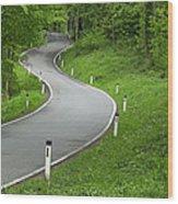 Winding Road In The Woods Wood Print
