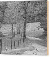 Winding Road In Wilderness Black And White Wood Print by Sherri Duncan
