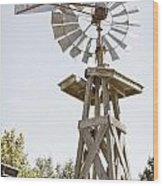 Windmill Antique In Color 3005.02 Wood Print