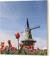Windmill Island Gardens Wood Print