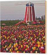 Windmill Of Flowers Wood Print