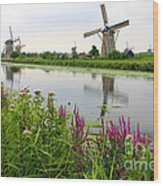Windmills Of Kinderdijk With Wildflowers Wood Print by Carol Groenen