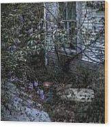 Window And Flowers Wood Print