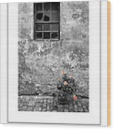 Window And Flowers Poster Wood Print