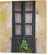 Window And Wall Colonial Style Wood Print