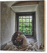 Window At Zamek Joannitow Hotel In Poland Wood Print