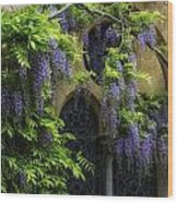 Window Behind Wisteria Wood Print