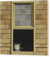 Window Cat    No. 2 Wood Print