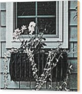 Window Dresser Wood Print by Bonnie Bruno