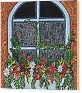 Window Flower Box On A Stucco Wall Wood Print
